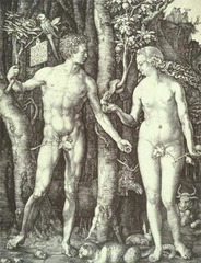 Albrecht Durer Fall of Man (Adam and Eve) 1504 Engraving  - Albrecht Durer was the first Northern European artist to become an international celebrity. Fall of Man, with two figures based on ancient statues, reflects his studies of the Vitruvian theory of human proportions.  - Name and date hanging from branch  - Represents the first distillation of his studies of the Vitruvian theory of human proportions, a theory based on arithmetic ratios