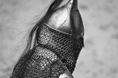 chain mail-medieval