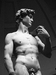 David by Michelangelo, High Ren - defiant hero of florentine republic, kind of political as it would've been in piatza overlooking florence  - before action of david, looking for foes - humanism, perfect male anatomy  - muscular body, tenseness in face, dertmination in browline, deeply set eyes - ponderation in pose, sense of controppasto, step forward - tension and reserved energy  - psychological insight, emotion  - david = young, but more mature as a man - hands carved to be very large, shows he will frow larger  - concept of powerful thing approaching - white marble emphasizes male white nude