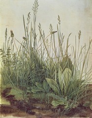 Figure 23-4A ALBRECHT DÜRER, Great Piece of Turf, 1503. Watercolor, 1' 3/4