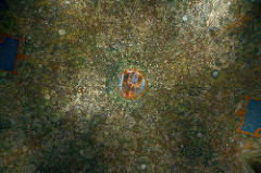 sforza castle, sala delle asse ceiling fresco, da vinci, 1498, milan
