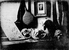 Still Life in Studio Louis-Jacques Mandé Daguerre. 1837 C.E. Daguerreotype. 1837 C.E. Daguerreotype He developed the daguerreotype process, produced pictures remarkable for the perfection of their details and for the richness and harmony of their general effect.