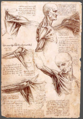 Dissection of a centenarian, da Vinci 1507-8 - Unlike others, da Vinci showed great interest into the internal workings of a human - wanted to find where in the body life was generated and where the soul lives