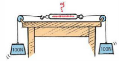Two 100-N weights are attached to a spring scale as shown. Does the scale read 0, 100, or 200 N, or does it give some other reading? (Hint: Would it read any differently if one of the ropes were tied to the wall instead of to the hanging 100-N weight?)